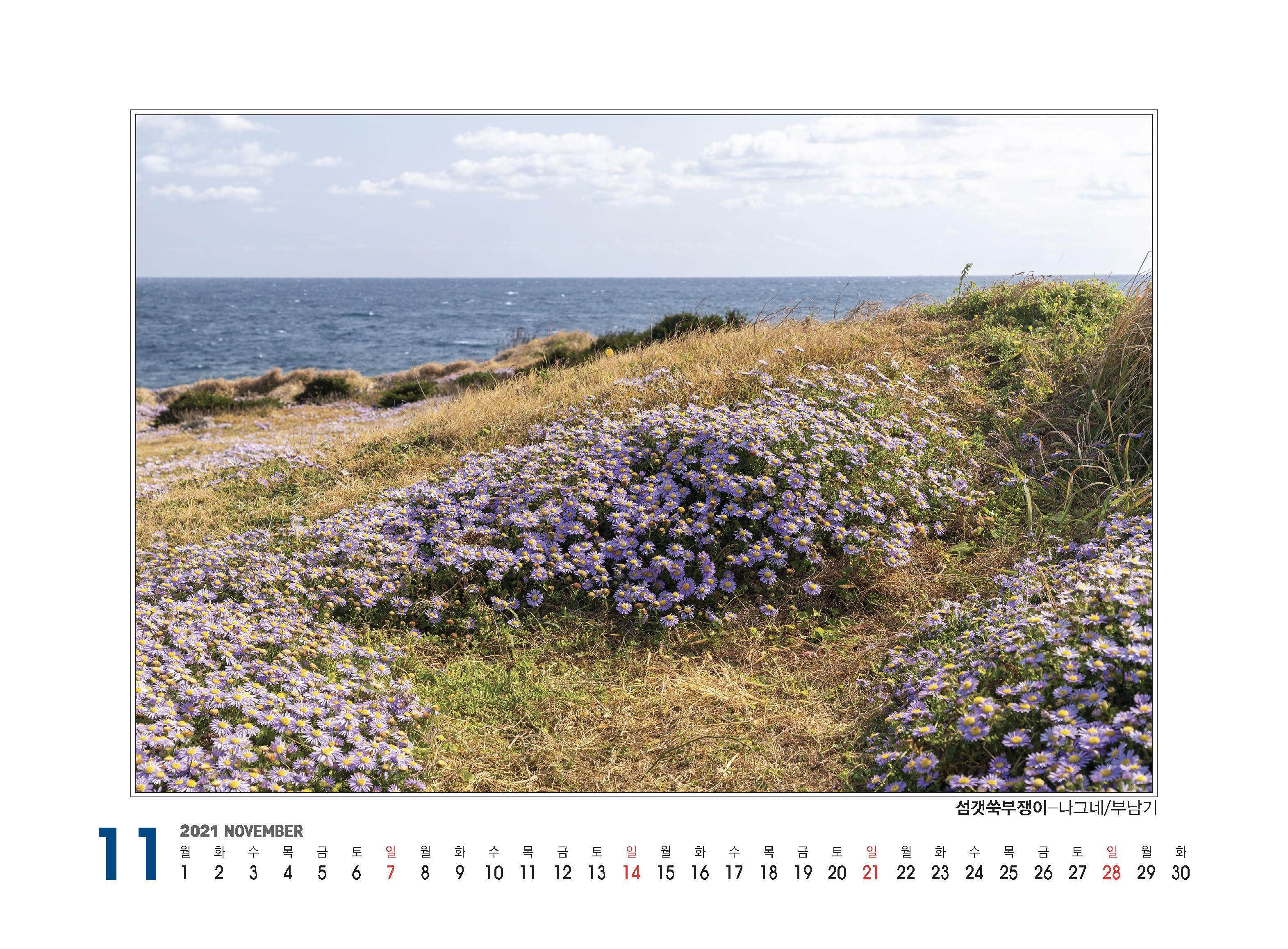 플로마카렌다(2021)260X190_페이지_25.jpg