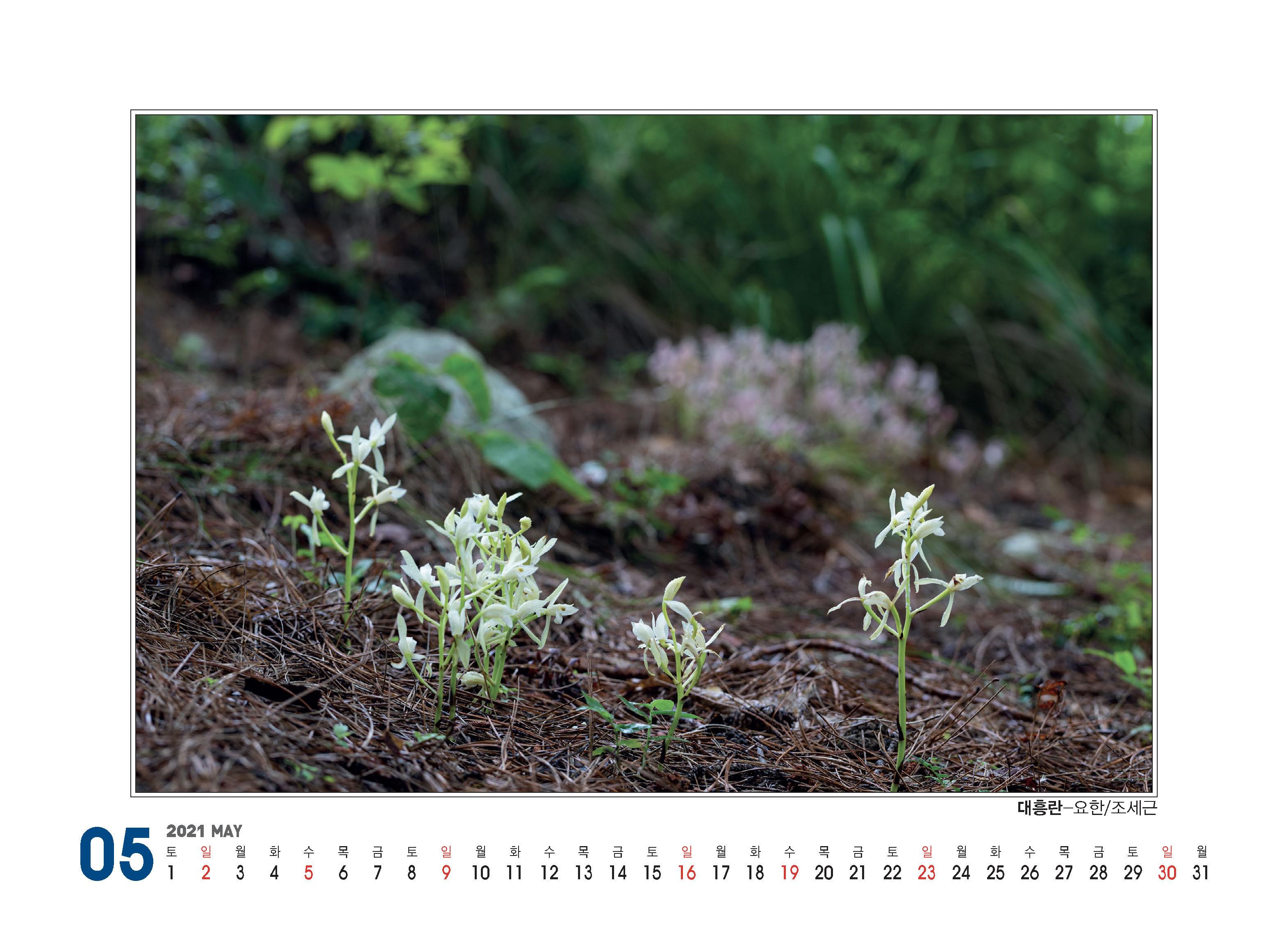 플로마카렌다(2021)260X190_페이지_13.jpg